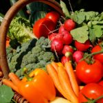 時代は工場野菜! 大手続々参入の植物工場のメリットとは